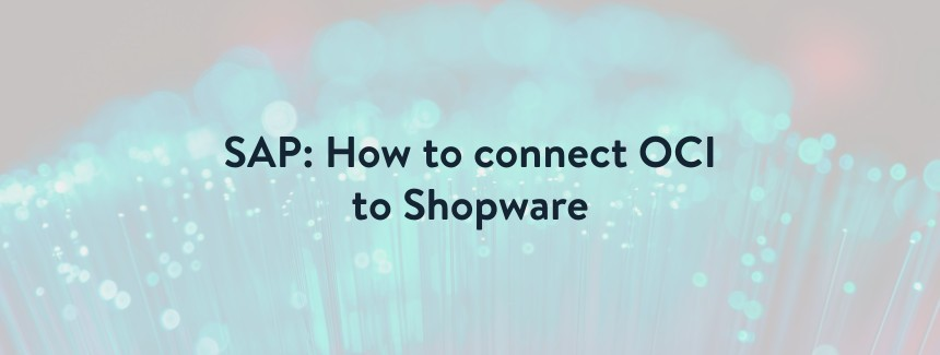 SAP interface: This is how the OCI connection to Shopware works